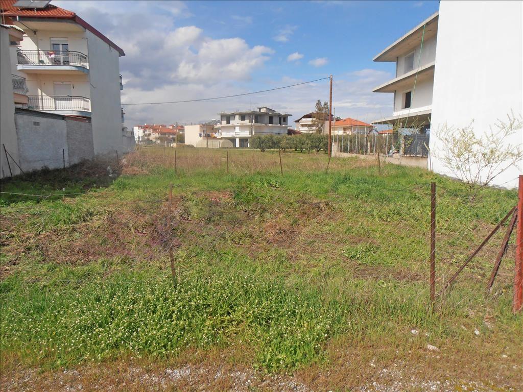 Земля в Пиерии, Греция, 295 м2 - фото 1