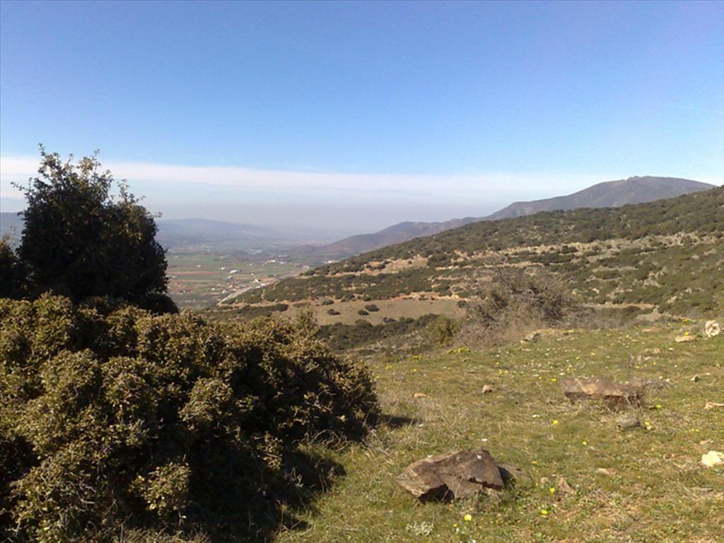 Земля в Полигиросе, Греция, 22910 м2 - фото 1