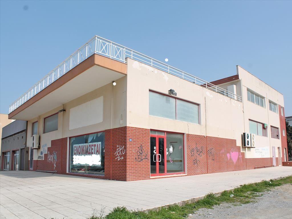 Коммерческая недвижимость в Пелле, Греция, 450 м2 - фото 1