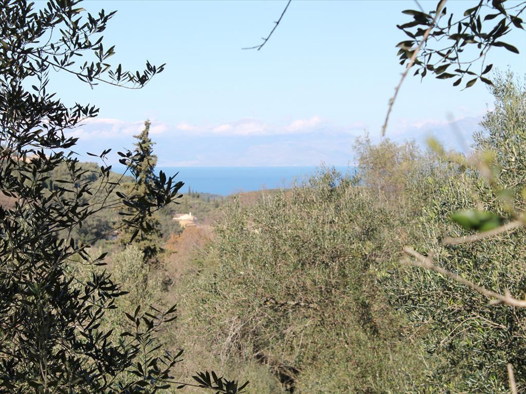 Земля на Керкире, Греция, 5000 м2 - фото 1