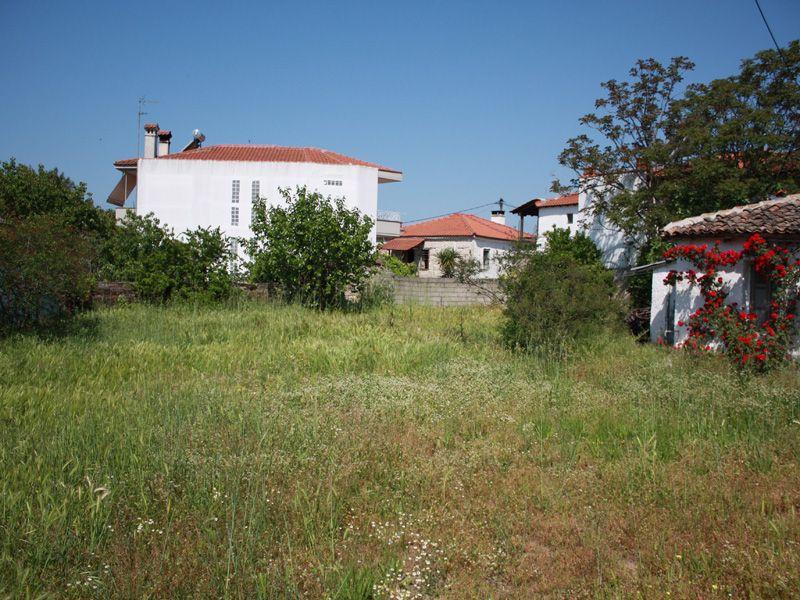 Земля на Кассандре, Греция, 550 м2 - фото 1