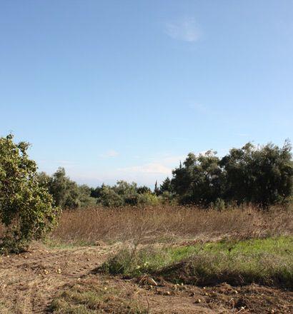 Земля в номе Ханья, Греция, 4286 м2 - фото 1