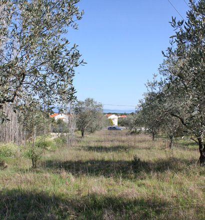 Земля в Ситонии, Греция, 17643 м2 - фото 1