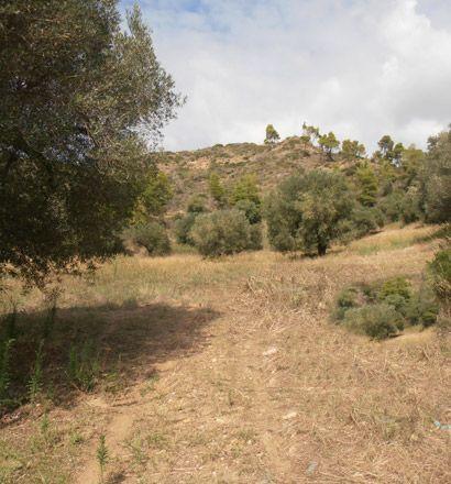 Земля в номе Ханья, Греция, 19000 м2 - фото 1
