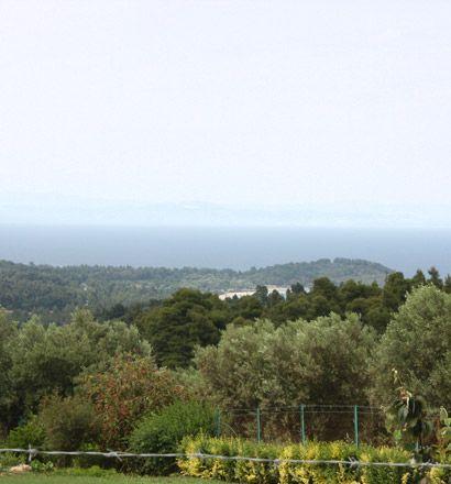 Земля в Ситонии, Греция, 4332 м2 - фото 1