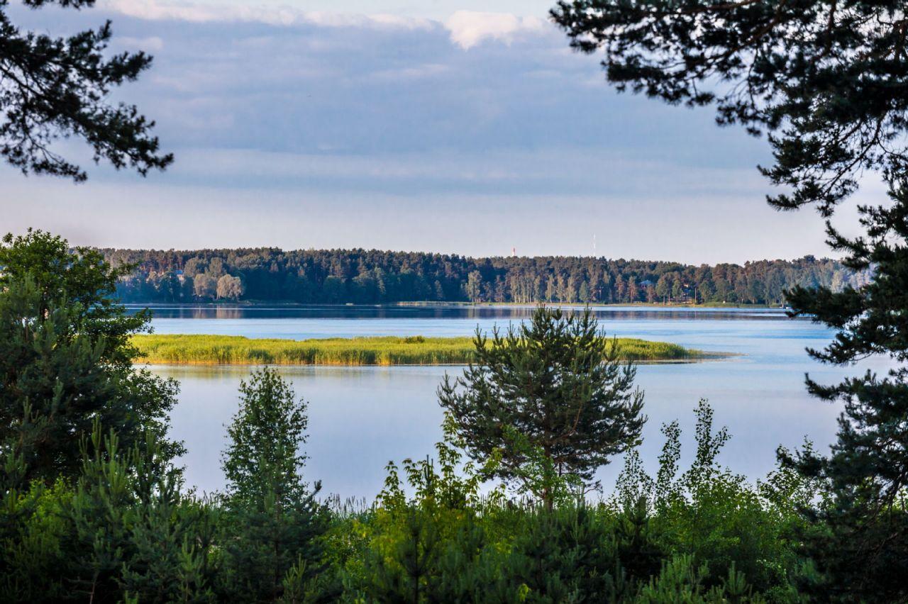 Земля Балтэзерс, Латвия, 2059 сот. - фото 1