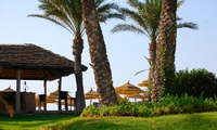 Неизвестный Тунис: новый рынок Средиземноморья