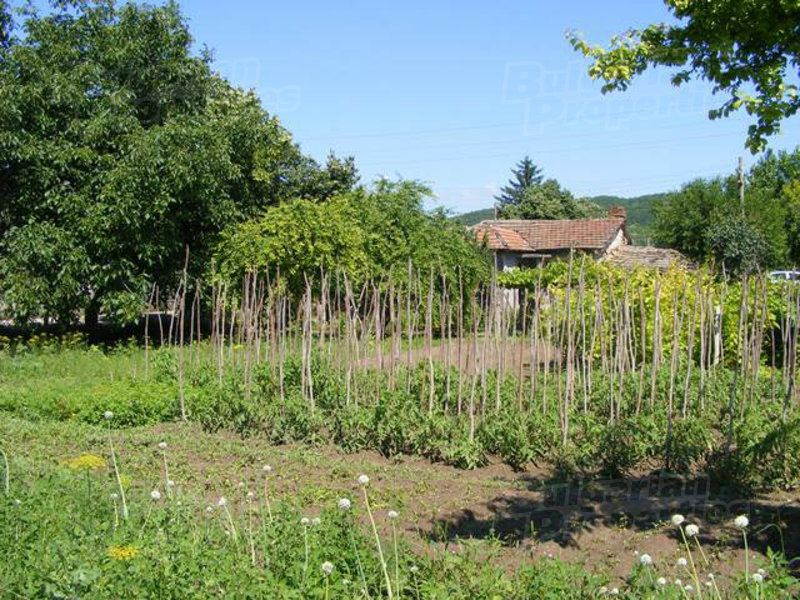 Земля в Мамарчево, Болгария - фото 1