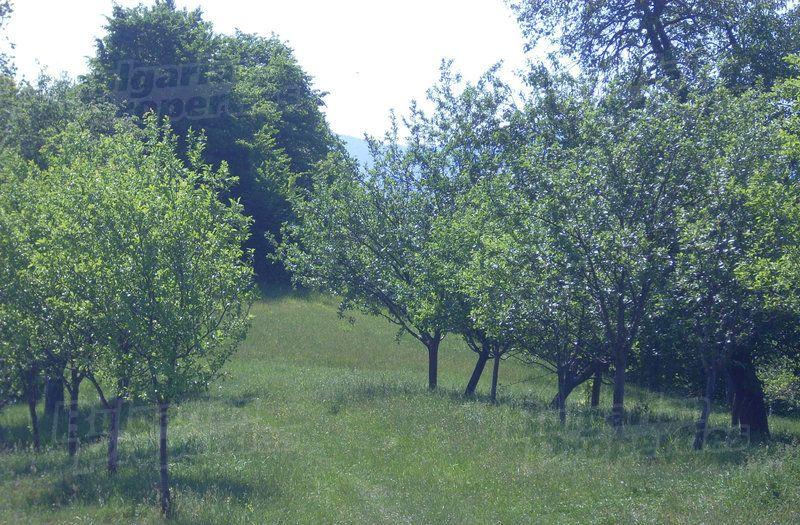 Земля в Ловече, Болгария, 1518 м2 - фото 1