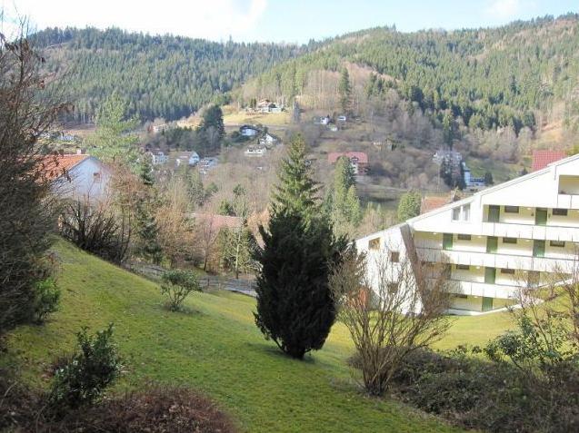 Квартира в Баден-Бадене, Германия, 35 м2 - фото 1