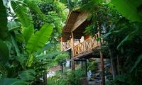 Личный опыт. Остров Пхукет – джунгли с комфортом