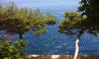 Италия и Монако начинают совместную борьбу со злостными неплательщиками налогов
