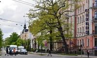 Обзор рынка недвижимости Латвии: 2014-2015
