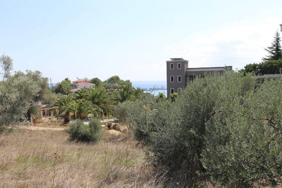 Земля на Кассандре, Греция, 5375 м2 - фото 1