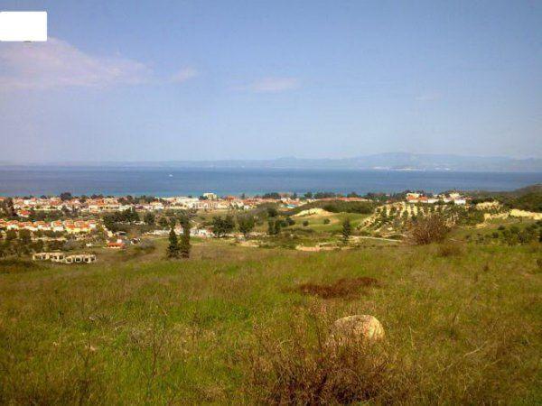 Земля на Кассандре, Греция, 8140 м2 - фото 1