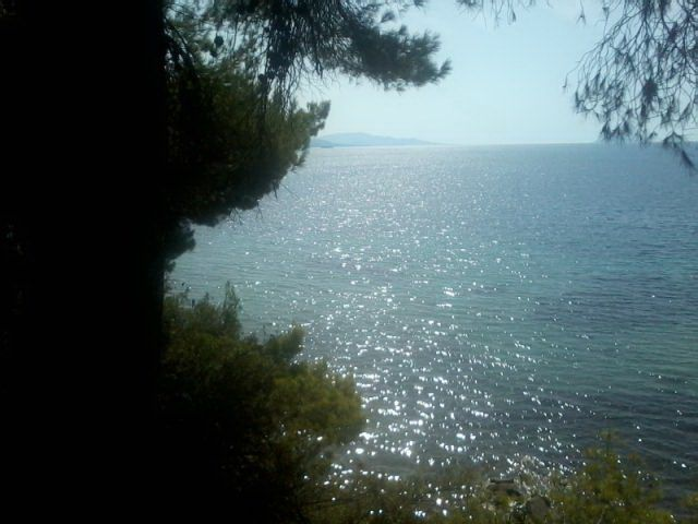 Земля в Ситонии, Греция, 12618 м2 - фото 1