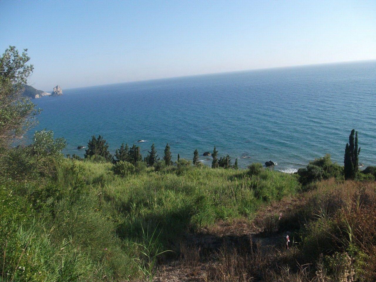 Земля на Керкире, Греция, 14000 м2 - фото 1