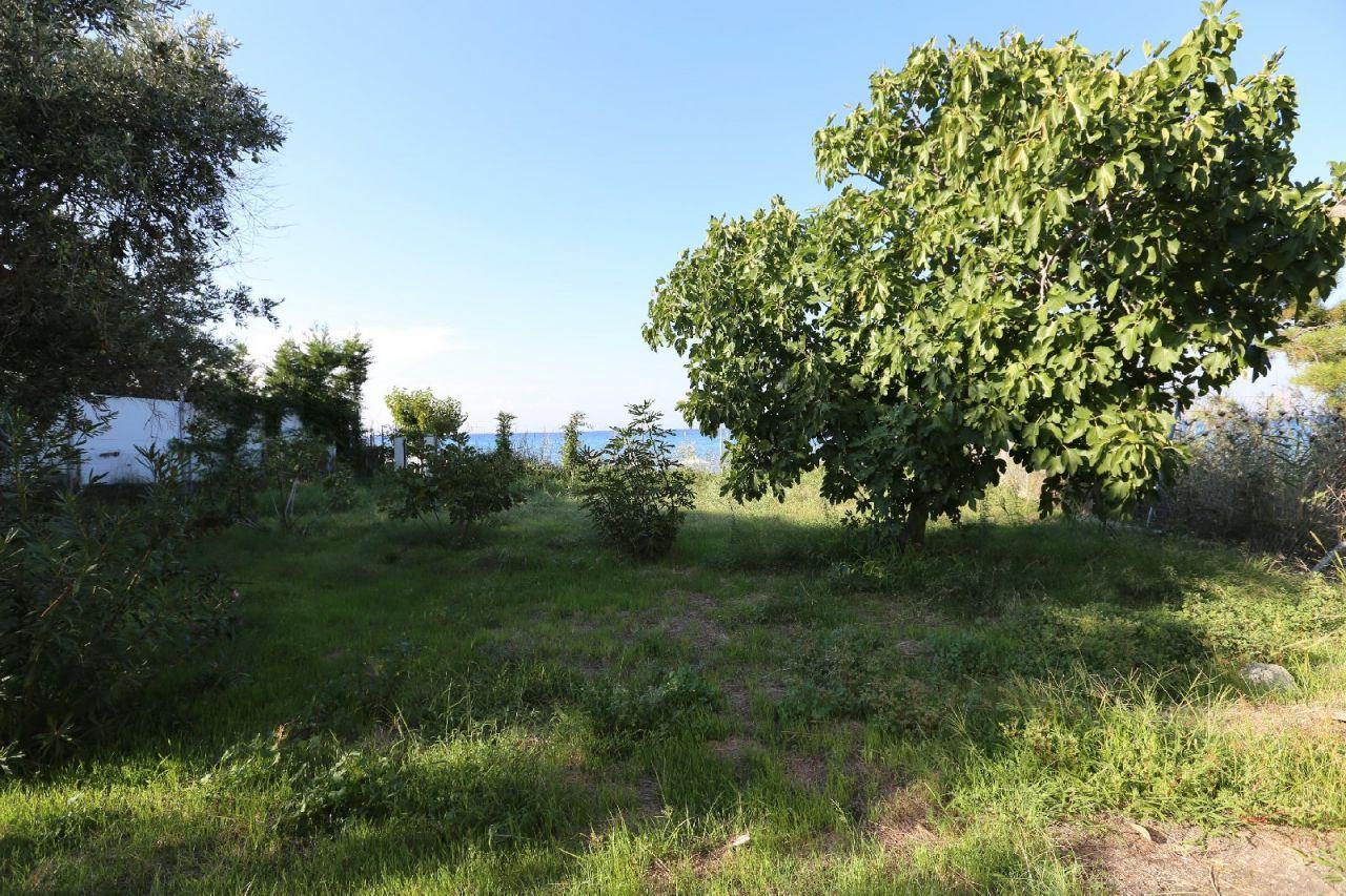Земля на Кассандре, Греция, 2347 м2 - фото 1