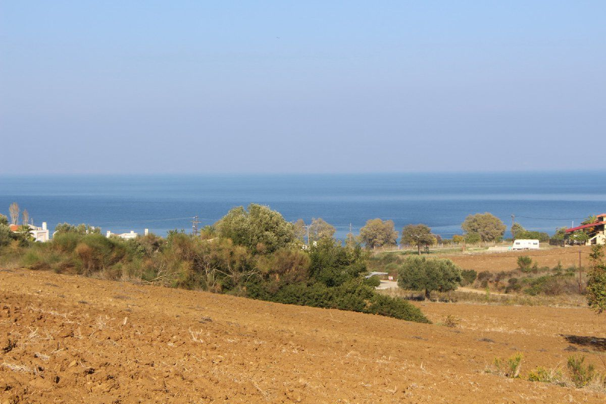 Земля на Кассандре, Греция, 4300 м2 - фото 1