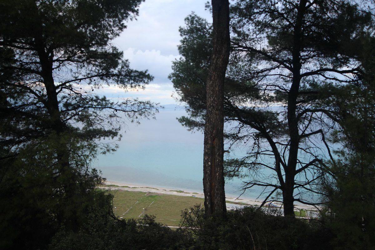 Земля на Кассандре, Греция, 9800 м2 - фото 1