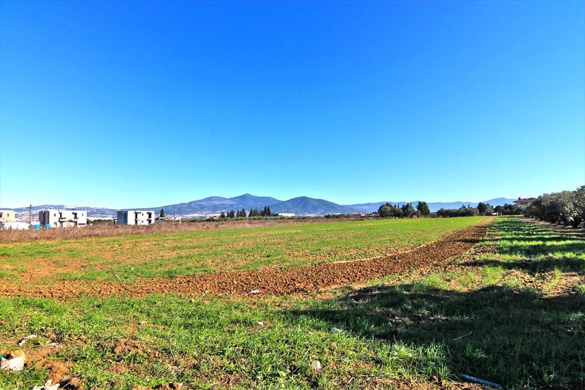 Земля в Салониках, Греция, 12750 м2 - фото 1