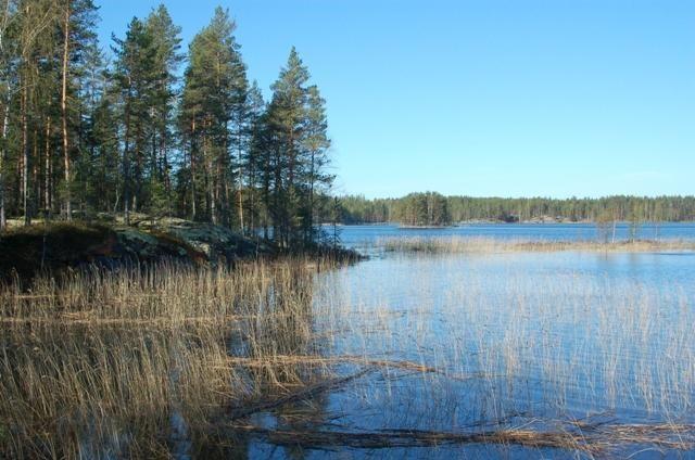 Земля в Руоколахти, Финляндия, 3380 м2 - фото 1