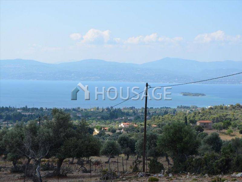 Земля на Эвбее, Греция, 65002 м2 - фото 1