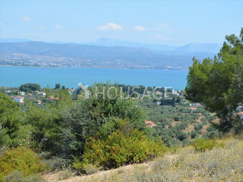 Земля на Эвбее, Греция, 1600002 м2 - фото 1