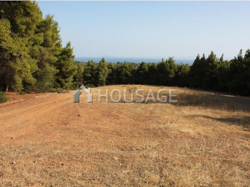 Земля в Ситонии, Греция, 13700 м2 - фото 1