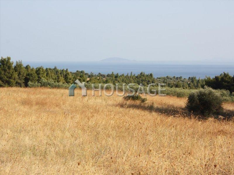 Земля в Ситонии, Греция, 17000 м2 - фото 1