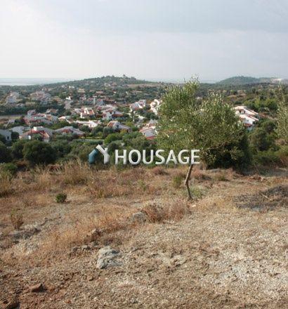 Земля в Ситонии, Греция, 7230 м2 - фото 1