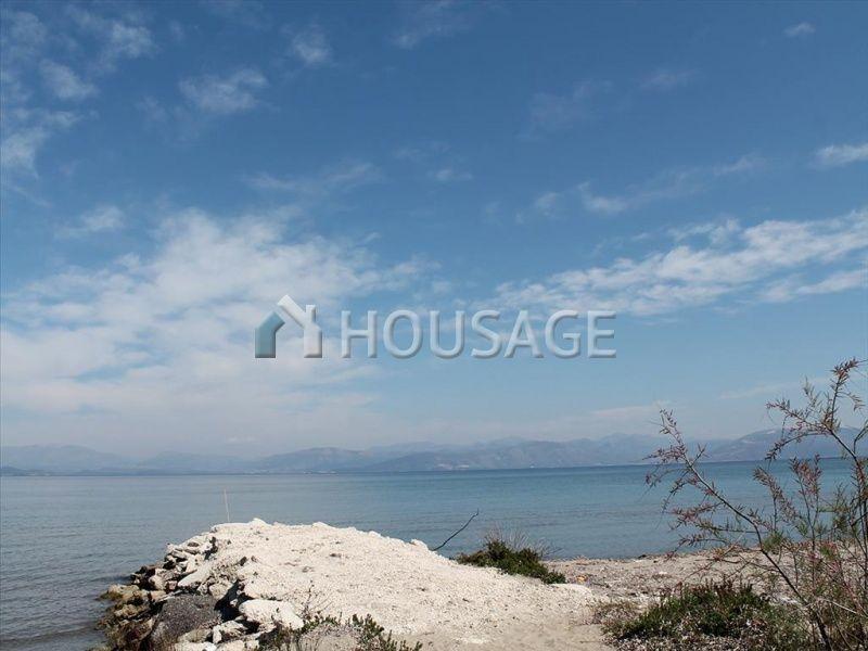 Земля на Керкире, Греция, 10000 м2 - фото 1