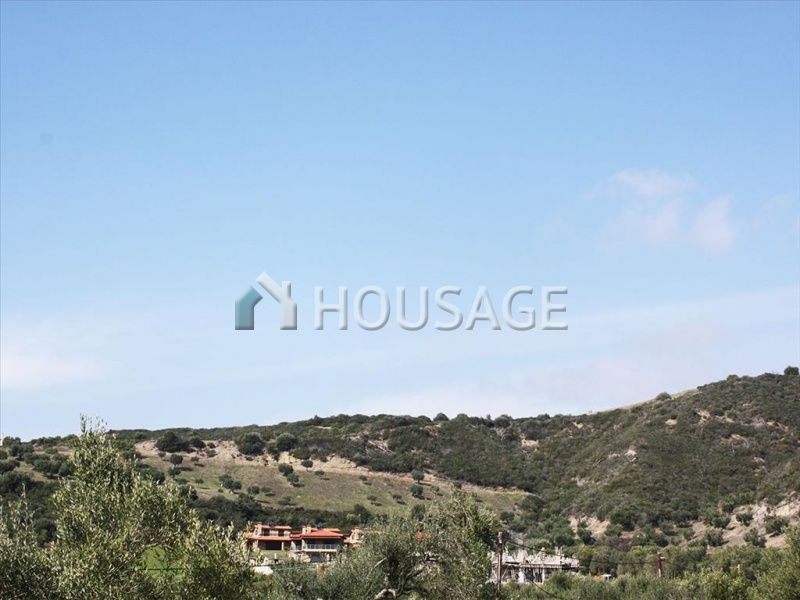 Земля на Кассандре, Греция, 8015 м2 - фото 1