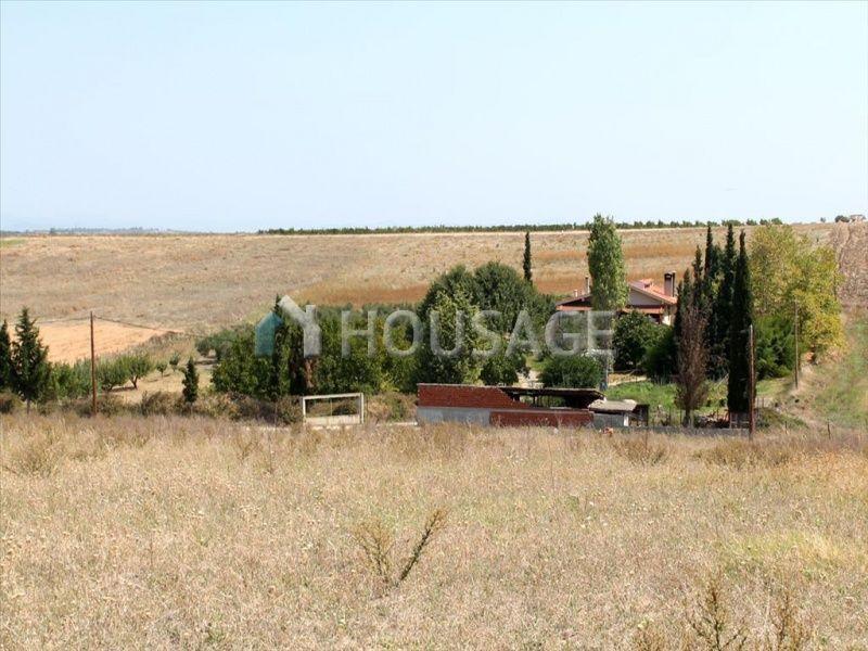 Земля на Кассандре, Греция, 10000 м2 - фото 1