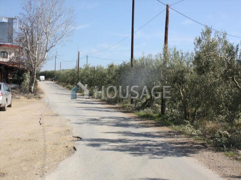 Земля на Кассандре, Греция, 8880 м2 - фото 1