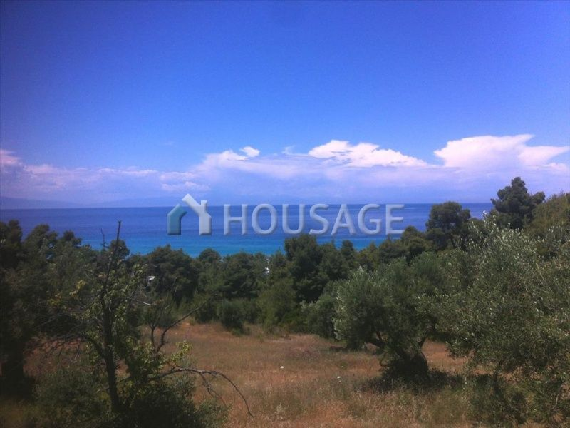 Земля на Кассандре, Греция, 6412 м2 - фото 1