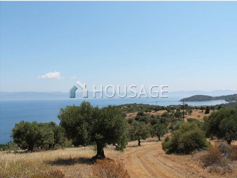 Земля на Кассандре, Греция, 26800 м2 - фото 1
