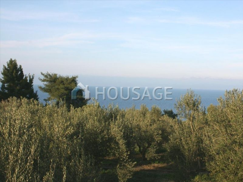 Земля на Кассандре, Греция, 20000 м2 - фото 1