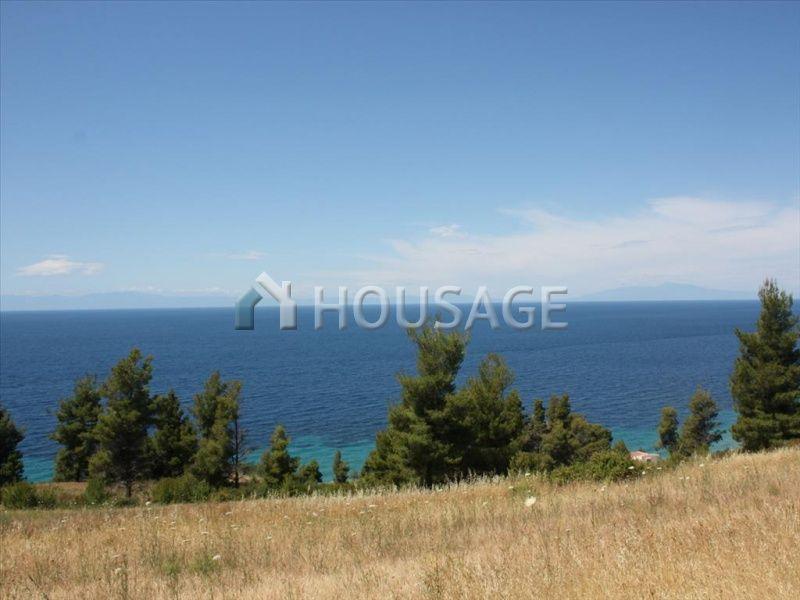 Земля на Кассандре, Греция, 36000 м2 - фото 1
