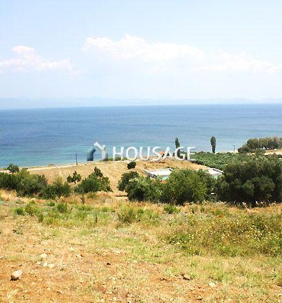 Земля на Кассандре, Греция, 17000 м2 - фото 1