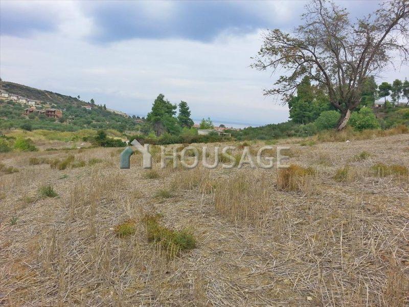 Земля на Кассандре, Греция, 15000 м2 - фото 1