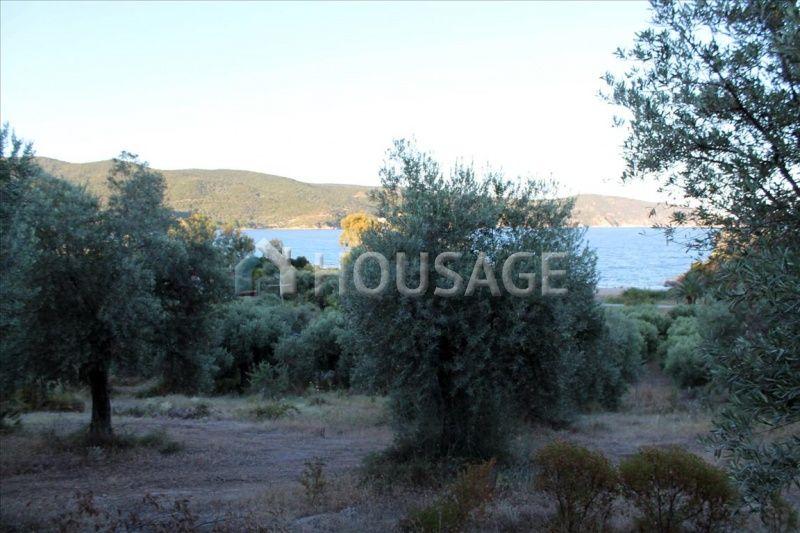 Земля на Афоне, Греция, 64502 м2 - фото 1