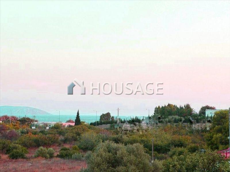 Земля в Аттике, Греция, 11602 м2 - фото 1