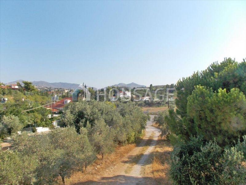 Земля в Аттике, Греция, 30002 м2 - фото 1