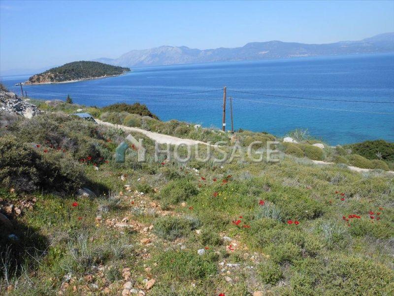Земля на Эвбее, Греция, 7802 м2 - фото 1