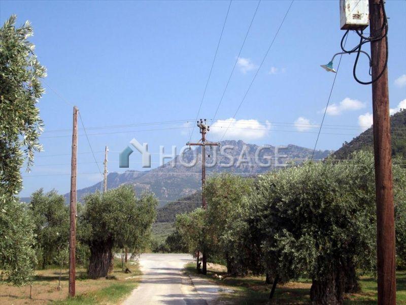 Земля на Тасосе, Греция, 5300 м2 - фото 1