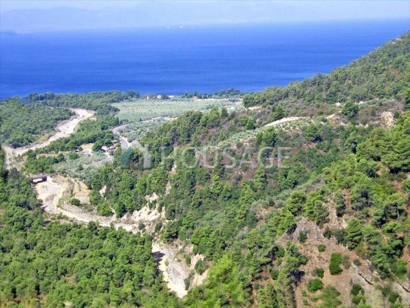 Земля на Эвбее, Греция, 7500 м2 - фото 1