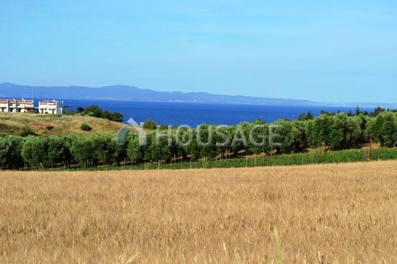 Земля на Кассандре, Греция, 6000 м2 - фото 1