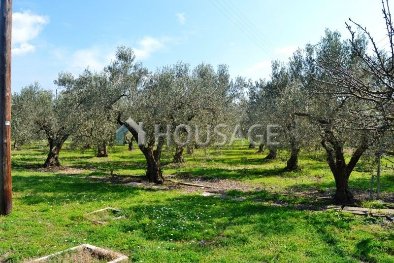 Дом на Кассандре, Греция, 4945 м2 - фото 1