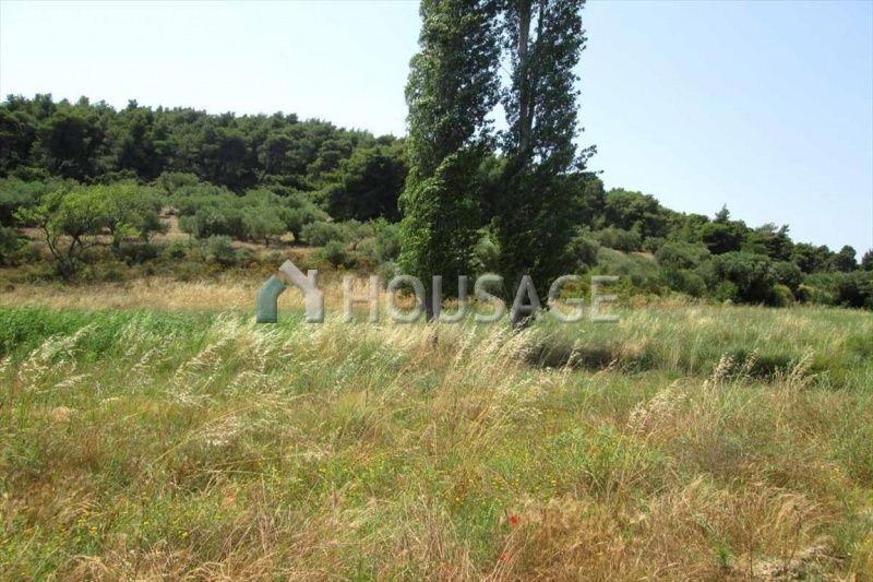 Земля в Ситонии, Греция, 6533 м2 - фото 1